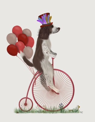 Springer Spaniel Brown and White on Penny Farthing