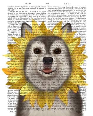 Husky Sunflower