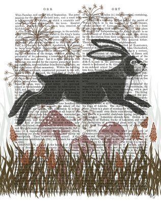 Country Lane Hare 4