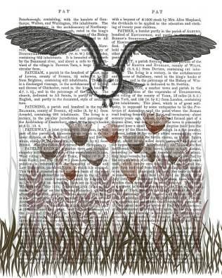 Country Lane Owl 4