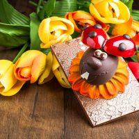 gallerie-schokolade-marienkaefer