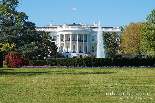 Washington DC + Smithsonian
