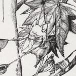 EveryDay2-Detail-800