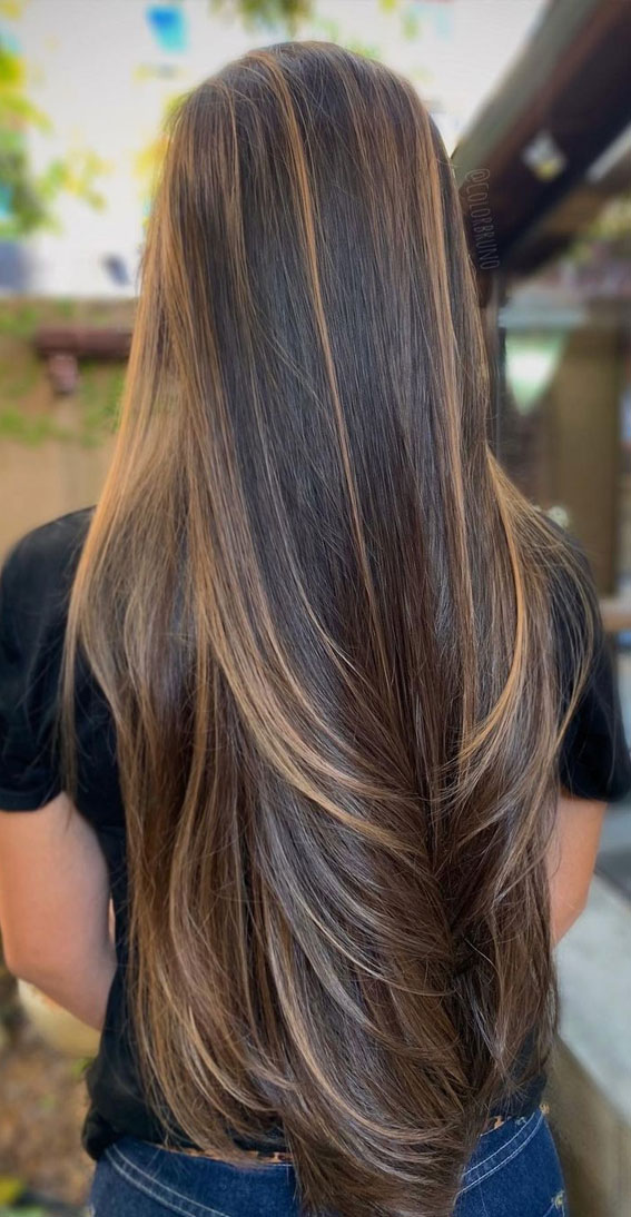 Gorgeous Hair Colour Trends For 2021 : Light Brown Highlights