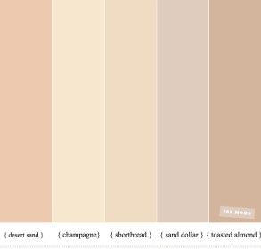 Neutral wedding color for a minimalist wedding theme - wedding color ideas , blush hues , neutral wedding ideas