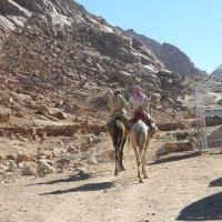 Jurnal de călătorie: Sharm el Sheikh