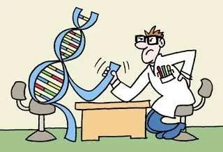 Check up genetico e alimentazione