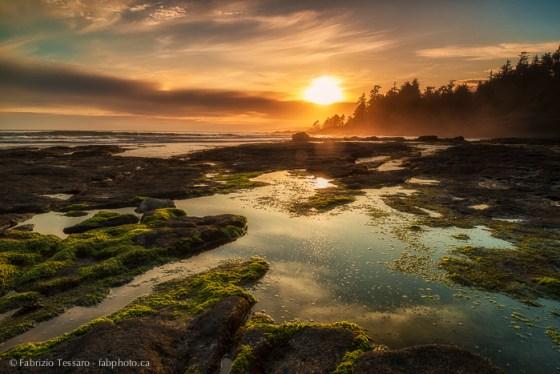 Port Renfrew,Vancouver Island,Botanical Beach,