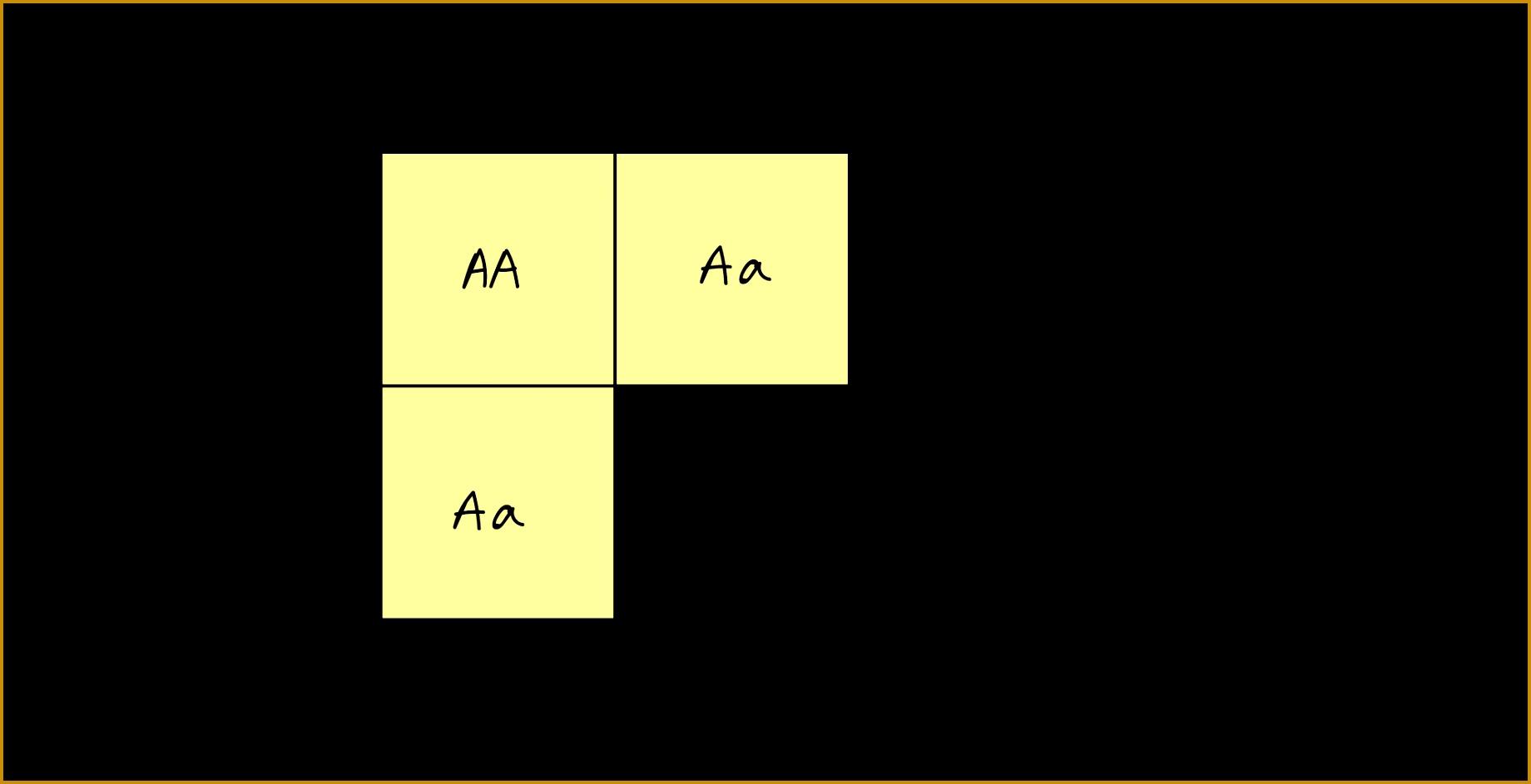 Dihybrid Cross Punnett Square Practice Worksheet