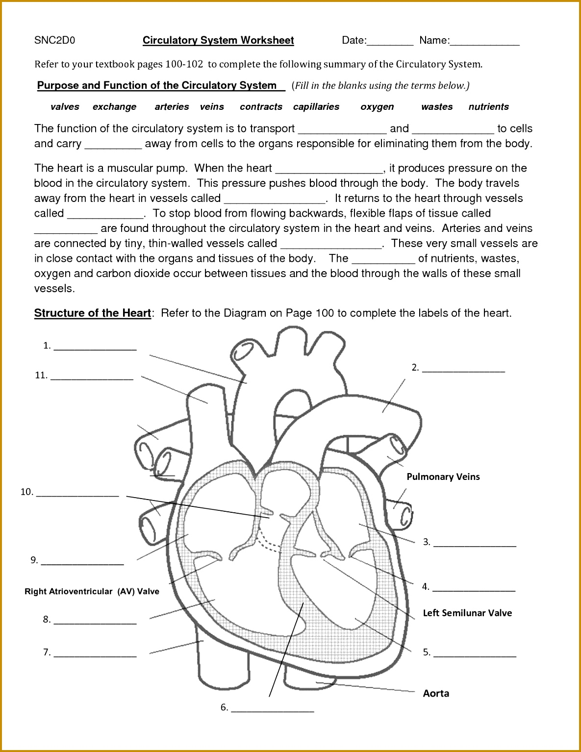 7 Science Worksheets