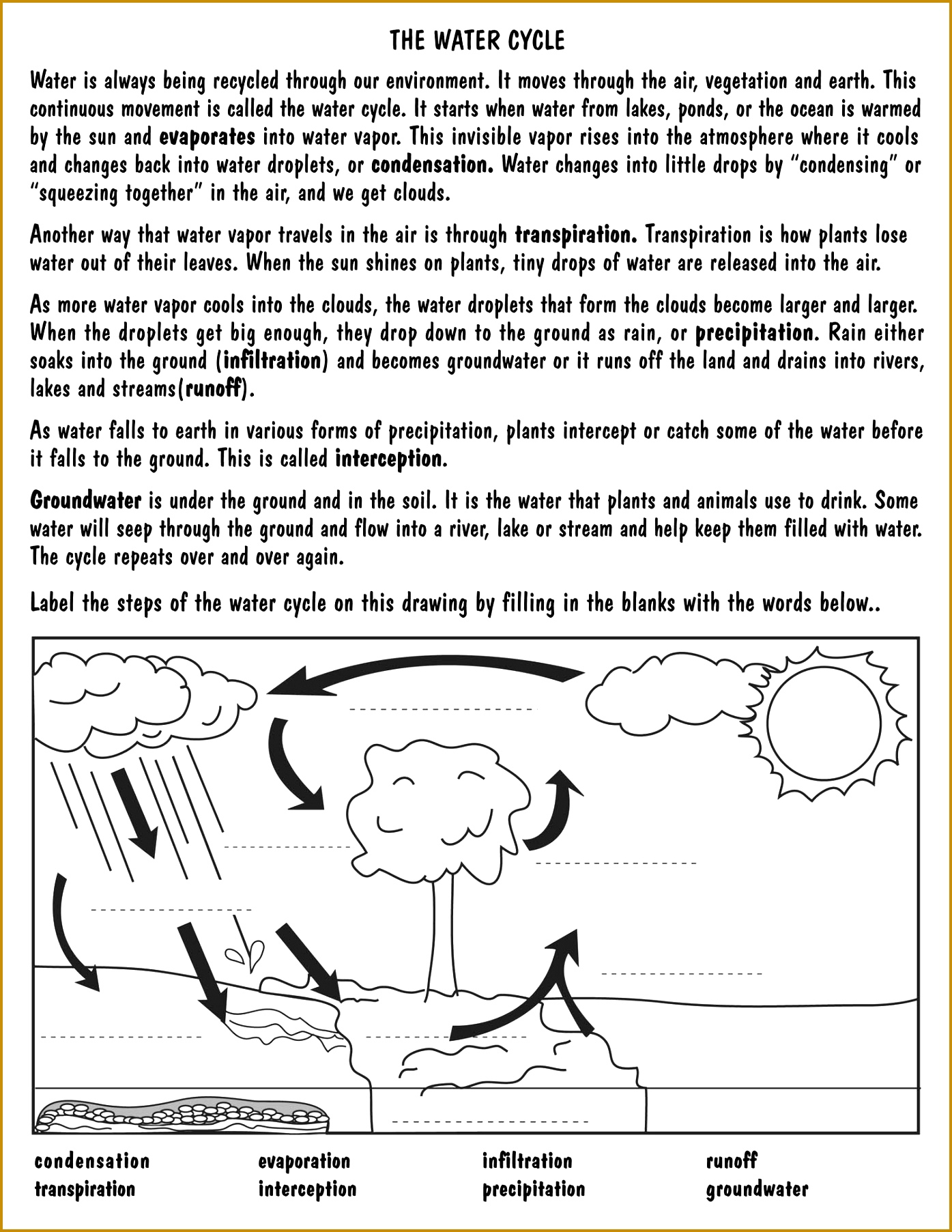 4 Water Pollution Worksheet