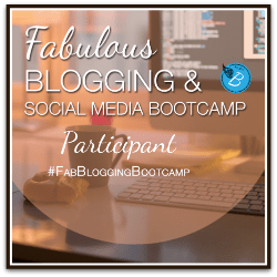 Fabulous Blogging Bootcamp!