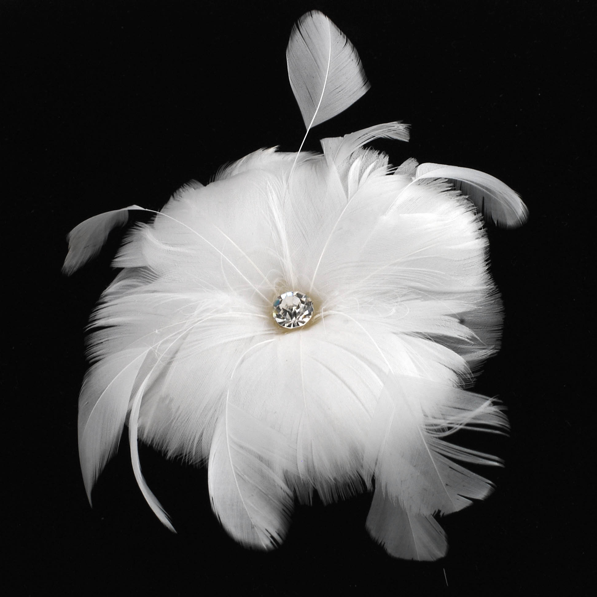White Feather Flower