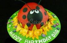 Lady Bug Cakes