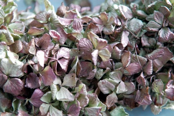 DIY: Hortensia krans basic kerstkrans krans van hortensia's droogbloemen krans spuiten krans met verf