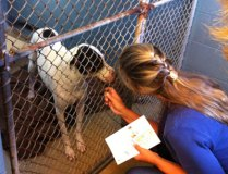 Fab-Finds-Featured-Story-flagler-humane-society-black-white-2