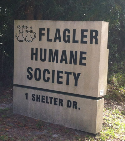 Fab-Finds-Featured-Story-flagler-humane-society-road-sign