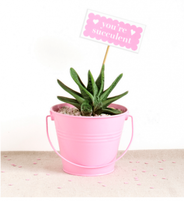 DIY love planter