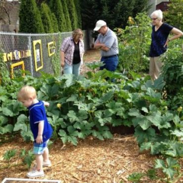 5 Captivating Ideas & Benefits of Gardening with Kids