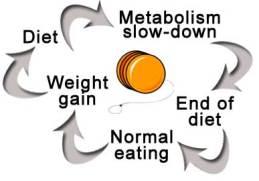 yoyo-diet