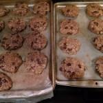 Lactation Cookie Baking Experiment