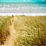 The Key to Taking Pictures Like a Professional Photographer – Free chapter