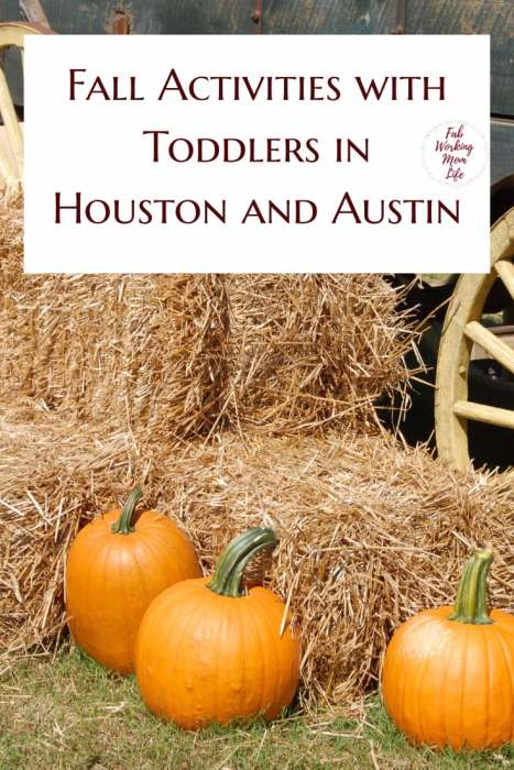 Fall Activities with Toddlers in Houston and Austin