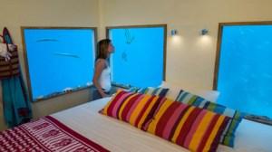 Underwater-Room-at-The-Manta-Resort_dezeen_7