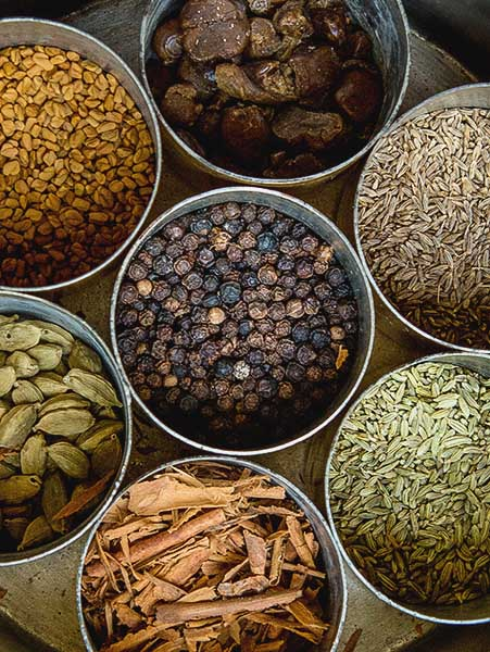 Masala dabba, spice box, The Bangala, Karaikudi, Tamil Nadu, South India, India, Faces Places and Plates blog