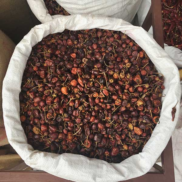 Goondu Milagai chilies, Indian market, Karaikudi, Tamil Nadu, South India, India, Faces Places and Plates blog