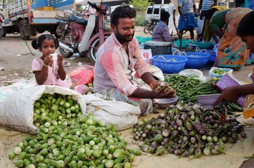 A man selling vegetables sits on a tarp amongst his large piles of eggplant. He passes a customer a handful of purple eggplant while a young girl in a pink dress and pig tales drinks from a small white cup and looks at the camera.