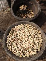 Creamy raw cashews, slightly charred, sit in an rough stone carved bowl, which sits on the dirt ground.