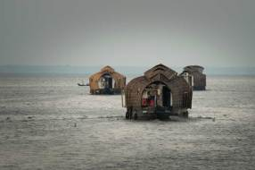 Houseboats on the Kerala Backwaters.
