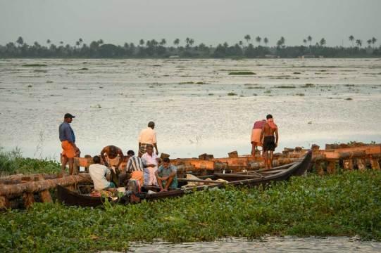Dike repair, Kerala Backwaters.
