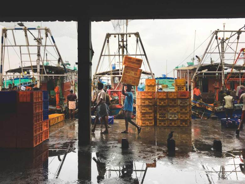 Fish-Market-Kozhikode Man-Carting-Crates