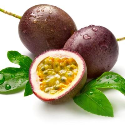 Image of Passiflora 'Passionfruit Pandora'