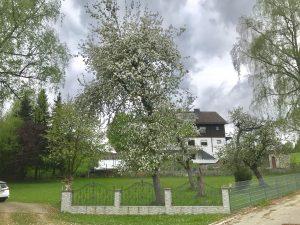 Modernes Fachwerkhaus Grundstücksbesichtigung Teil 1