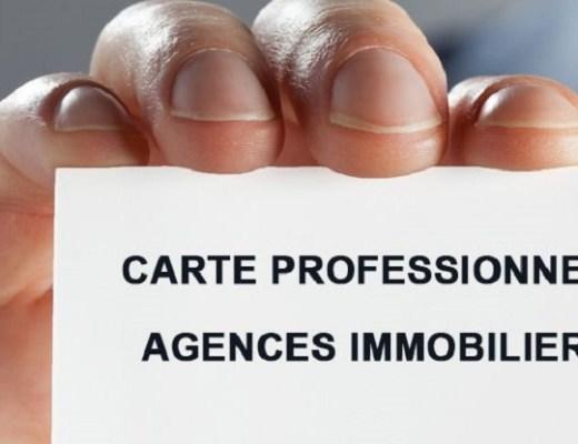 carte professionnelle agent immobilier