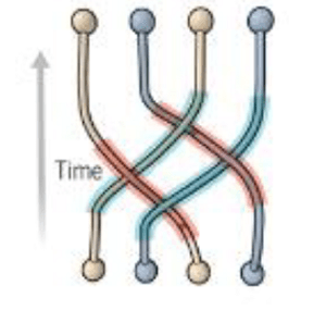 Topological qubits