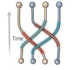 Topological qubits