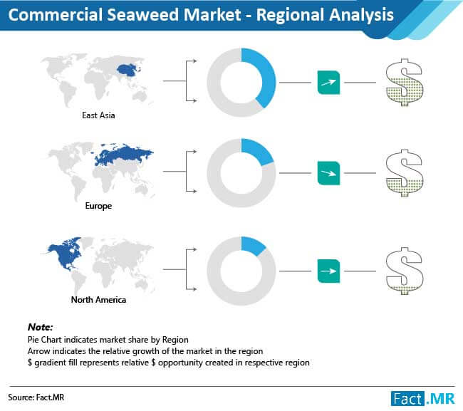 commercial seaweed images 01