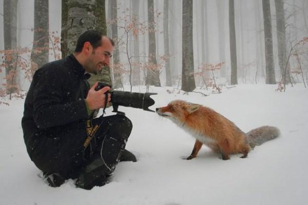30 фото-зарисовок из жизни фотографов-натуралистов и их ...