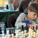 2016-ajedrez-prov-21