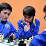 2017-blitz-silla-ajedrez-15