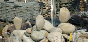 stones garden kewanee faddegons nursery