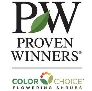 proven winners colorchoice prides corner