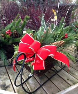 sleigh2