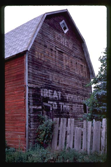 Mail Pouch Barn - Lewistown NY (near Niagra Falls) 1998