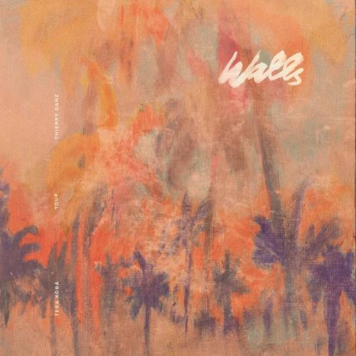 Tera Kòrá & Youp - Walls (feat. Thierry Ganz) (artwork faeton music)