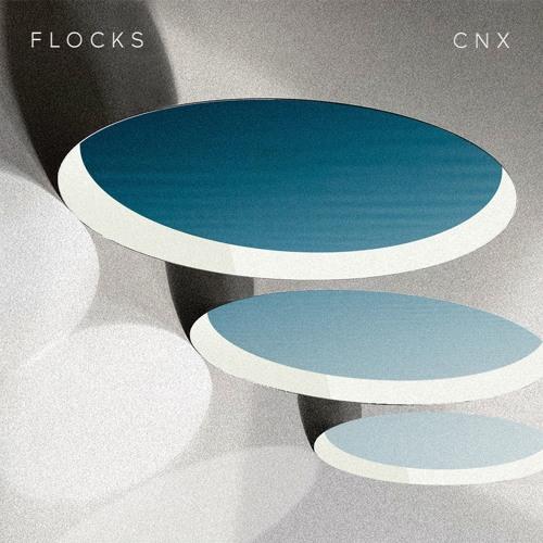 FLOCKS - CNX (artwork faeton music)